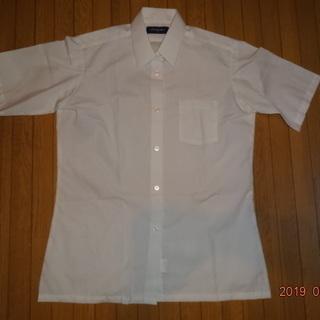 スクールシャツ Classmate 男子 半袖 165