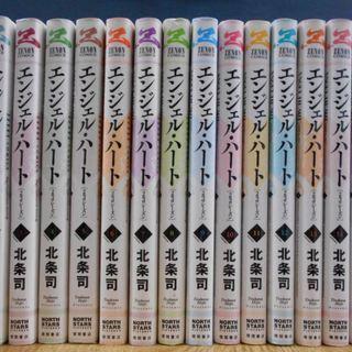 北条司「エンジェルハート 2ndシーズン」全16巻。