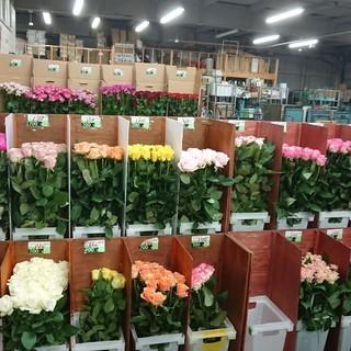 初心者歓迎!お花に囲まれた職場!