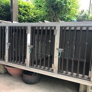 ゲージ 檻 犬 猟犬 輸送箱