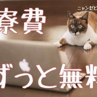 【FC10213y】弊社おすすめ案件!【ペットボトルの製造・検品】...