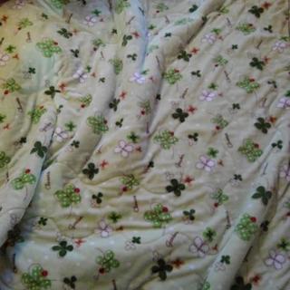 毛布 190×190センチ グリーン