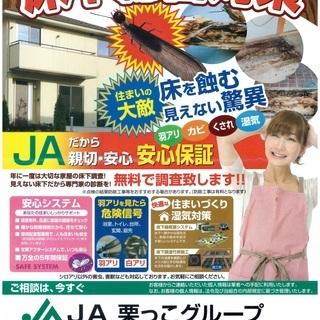 【調査費無料】羽アリ、カビ、腐れ、湿気の床下調査が無料!(…