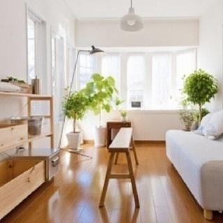 【SOHO・アトリエ向き】ビルトインガレージ付きの一戸建ては家具...