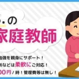 【現役京大生による家庭教師✍🏻】3,600/1h〜