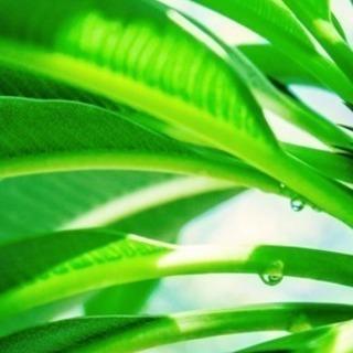 【長野】美近な®︎が考えるセルフプロテクト講座〈ジメジメ梅雨☔️...