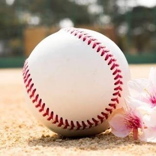 ⚾️ビバ☆野球⚾️