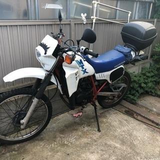MTX50R フルサイズ2st