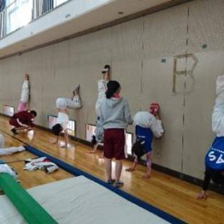生徒募集※器械体操競技 - スポーツ