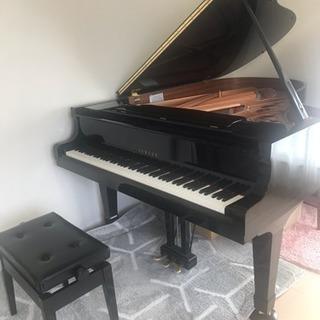 堀切菖蒲園近くのピアノ教室♪体験レッスン随時受付中 - 音楽