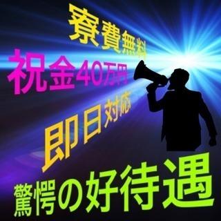今だけの特典!祝金!寮費無料!即日対応!タンブラーの製造(^^)