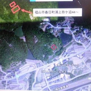 原野山林 490坪 ¥10万で譲ります!