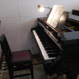 楽しくピアノを始めてみませんか?