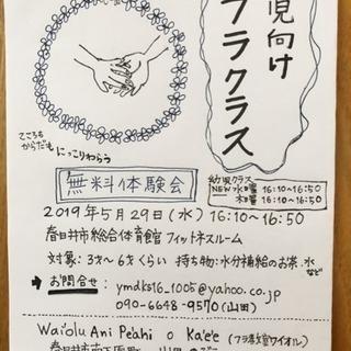 5/29(水) 幼児向けフラ 無料体験会