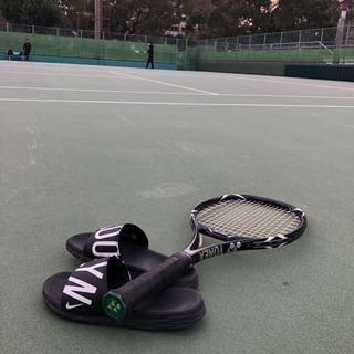 テニス仲間募集