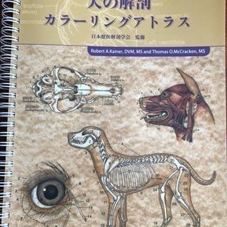 犬の解剖 カラーリングアトラス