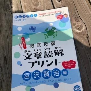 【未使用】陰山メソッド  小学3〜6年用 文章読解プリント