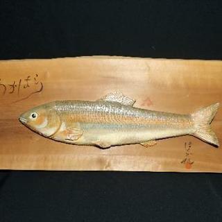 【美品・レア】ウグイの木彫り 魚 壁掛け 置物 インテリア 魚用...