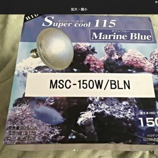 Super Cool115 marine blue