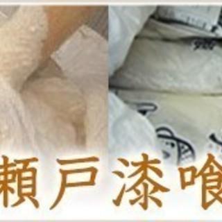 壁材 瀬戸漆喰(既調合の砂漆喰)天然素材=樹脂ゼロで日本初大臣認...
