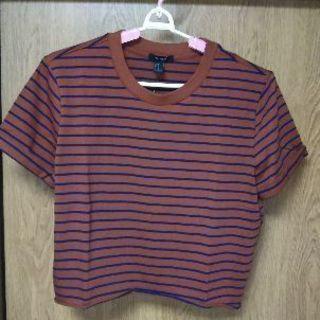 新品 レディース半袖Tシャツ(M)