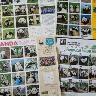 パンダ🐼 壁掛けカレンダー4点セット パンダ好き必見‼