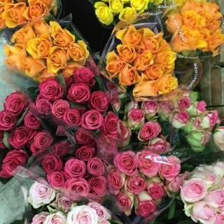 薔薇大束で1000円