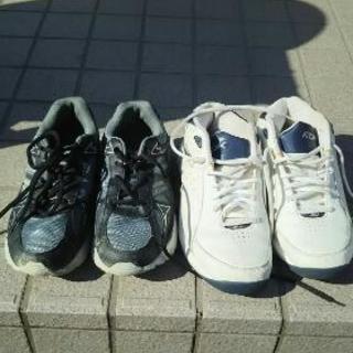 24.5男児靴
