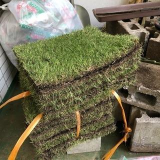 【取引中】高級芝生約1.5平米+目土14ℓが7袋+芝専用肥料