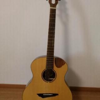Avian アコースティックギター