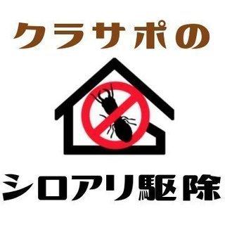 【小田原市密着業者】シロアリ・羽アリ駆除が1,000円/平…