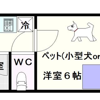 【グランソシエ大国Ⅱ】3号タイプ!1Kタイプ!猫も飼えるで!!