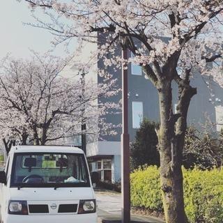 松本の便利屋タイガーエレファント