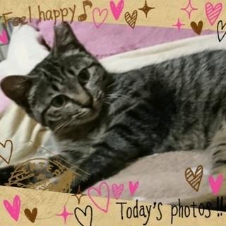 可愛いリナちゃん 6カ月