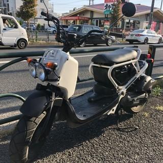 ズーマー白格安 - バイク