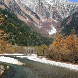 シェルパ派遣 山林、山岳地等で資材運びます。 研究、計測、…
