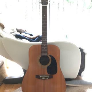 DANIEL アコースティックギター