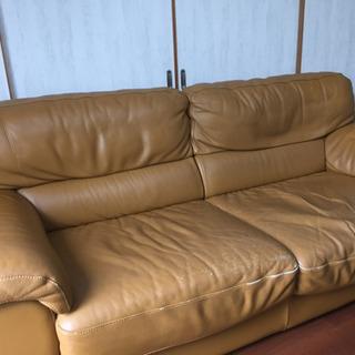 イタリア製ソファ(葉山ガーデンで購入)
