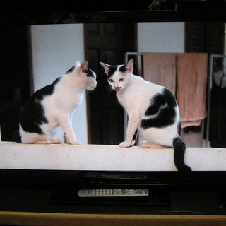 ◇取引終了 46型パナソニックテレビ☆HDD内蔵♪録画できます♪...