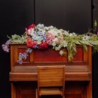 *pianino ピアノ教室*