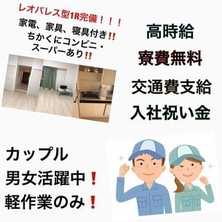 FC3697T 【即日対応】軽作業なのに高時給です!なんと高待遇で...