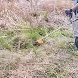 除草/伐採・剪定、さらには砂利入、防草・除草処理までの画像