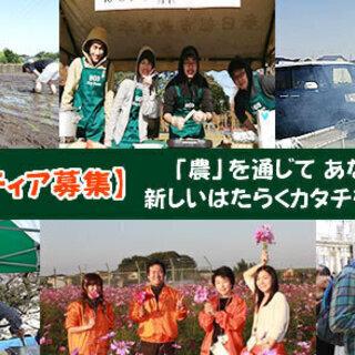 縄文ファーム:農業ボランティアメンバー募集