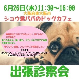 6/26(水)東大阪市ショウ君パパのドッグカフェ出張診察会