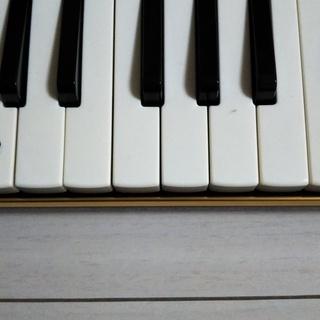1/11(祝)9時~12時、吹奏楽器であなたもアンチエイジング~!!!