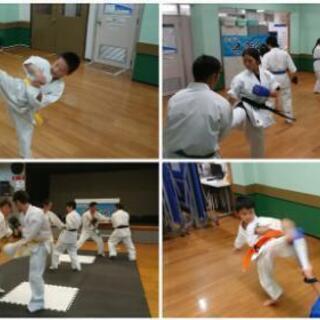 【湘南 空手教室】~波空会~現役K1選手が直接指導します - スポーツ
