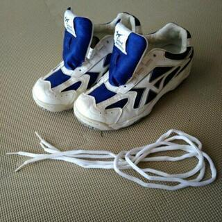 MoonStarの学校室内靴 24cm EEE