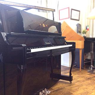 芸術的なピアノ プルツナーMPY500S