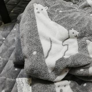 【取引相手決定済み】【値下げ】ニトリこたつ布団とカーペットセット...