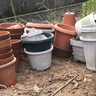 【更新】【無料・直接取引】植木鉢お好きなだけ